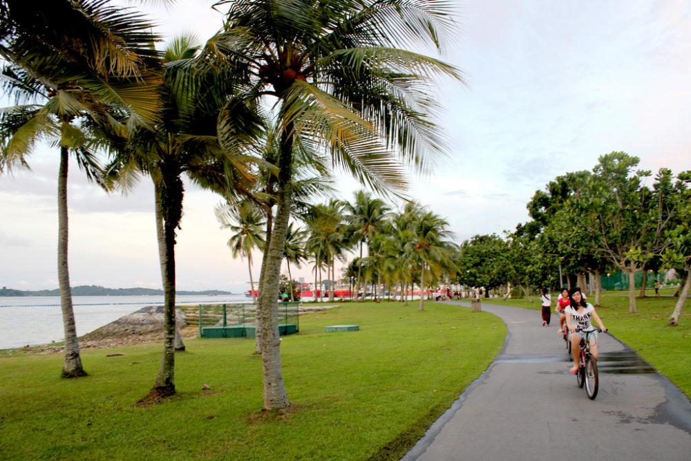 """""""pasir ris park camping singapore guide"""""""