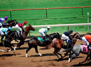 Guide: Horse racing in Singapore