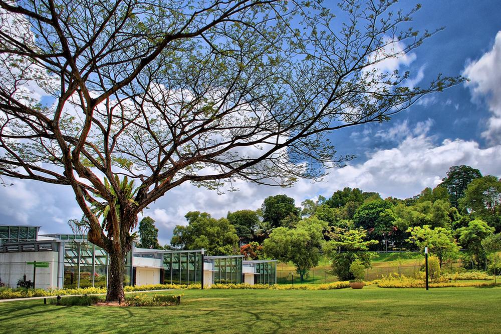 """""""Singapore, singaporenbeyond, picnic, gardens, weekend, picnic in Singapore"""""""