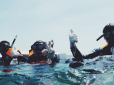 Top dive centres to take your PADI certification with