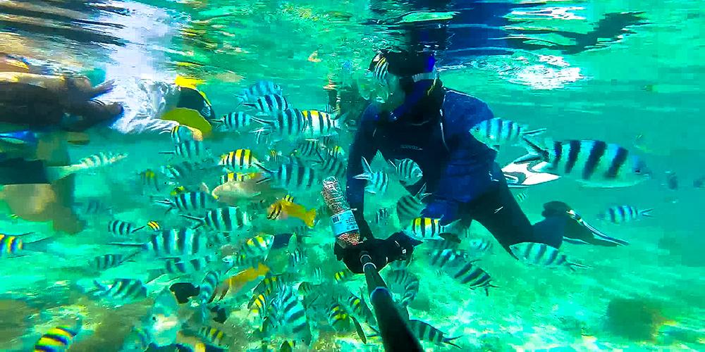 island hopping in colourful cebu mactan singapore n beyond