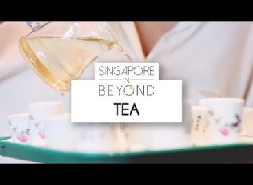 [VIDEO] Tea Workshop in Singapore