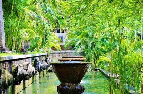 5 Spiritual Activities in Ubud, the cultural heart of Bali