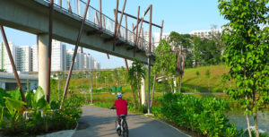 North Eastern Riverine Loop is a must-visit for cyclists