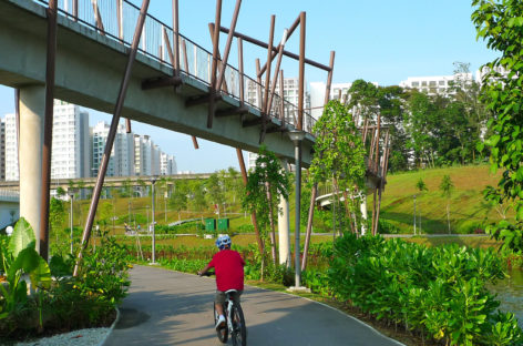Guide to the North Eastern Riverine Loop Singapore