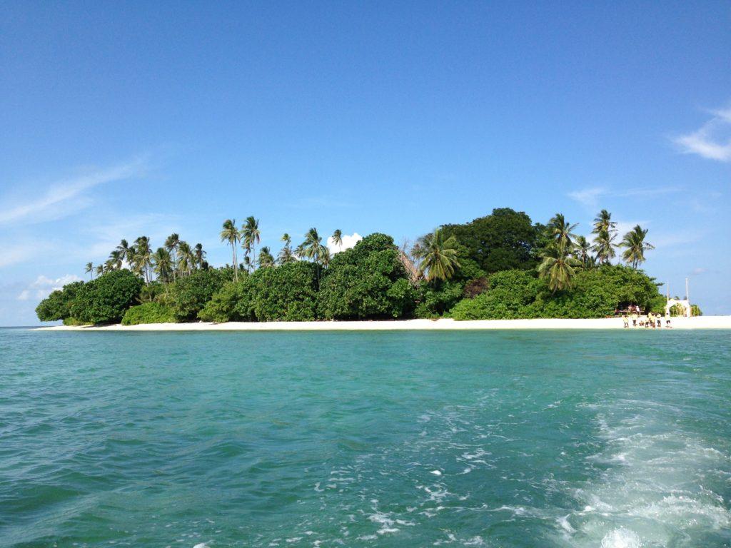 """""""Pulau Joyo"""""""