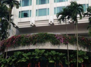 Free flow champagne at Shangri-La Singapore