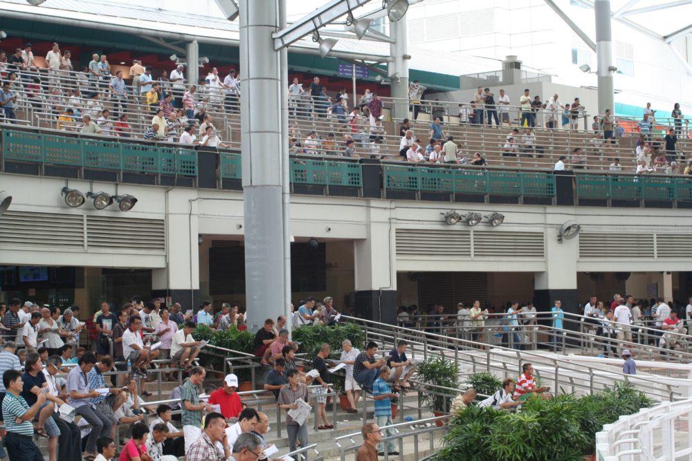 """grandstand kranji racecourse horse riding singapore"""