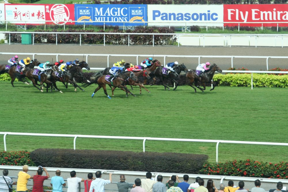 Betting zone horse tips singapore bitcoin sports betting exchange