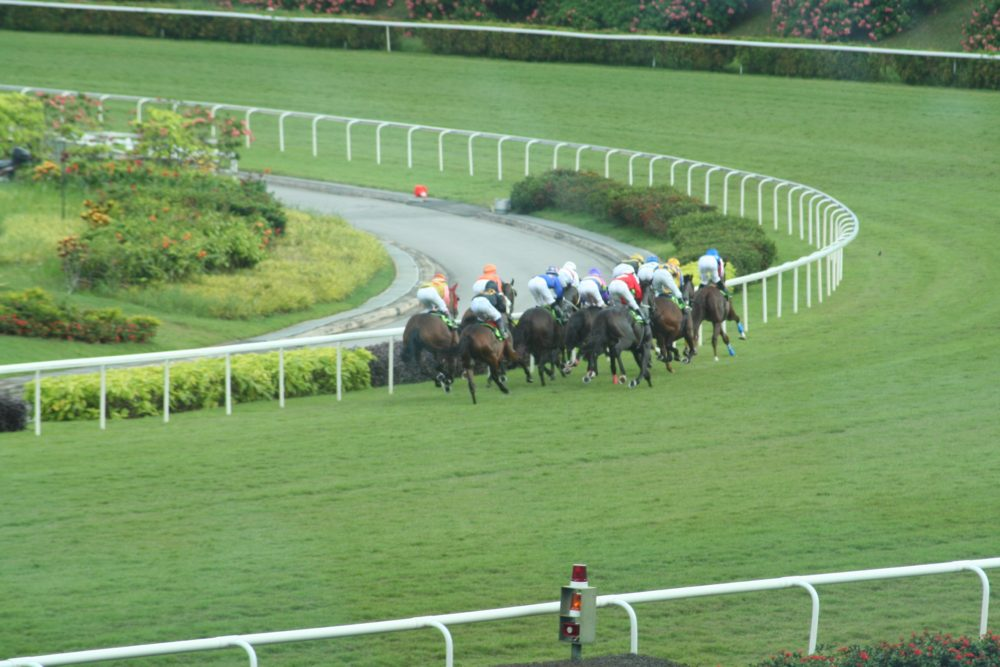 """kranji racecourse betting singapore turf club guide horse racing singapore"""