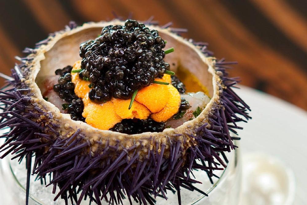 """expensive, restaurant, singaporenbeyond, food, luxury"""
