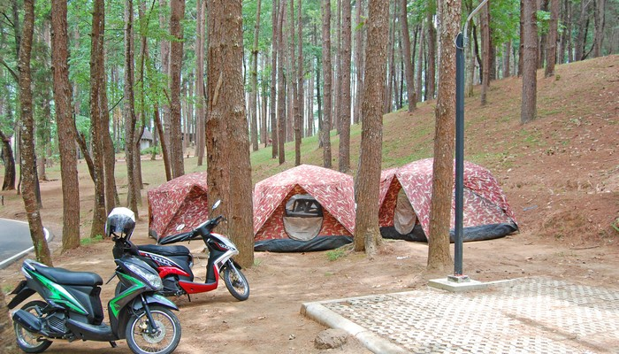 Tented camping in Doi Inthanon