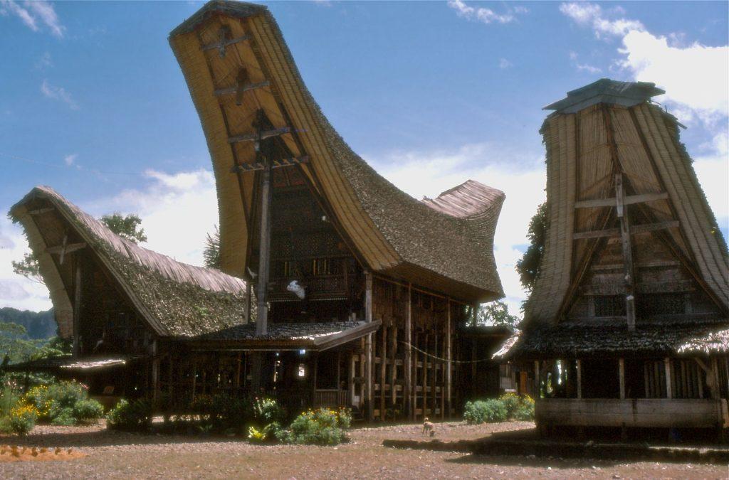 Tongkonan (traditional Torajan house