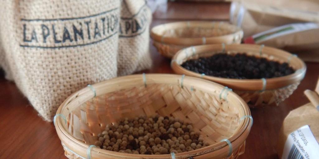 Pepper-at-La-Plantation-in-Kampot