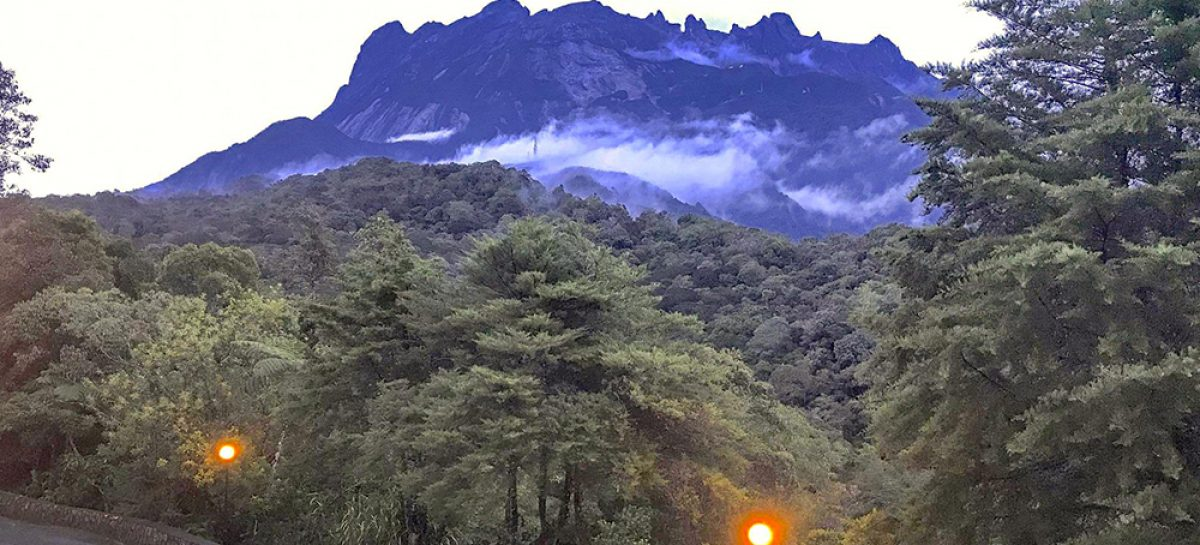 A fascinating weekend at Kinabalu Park, Borneo