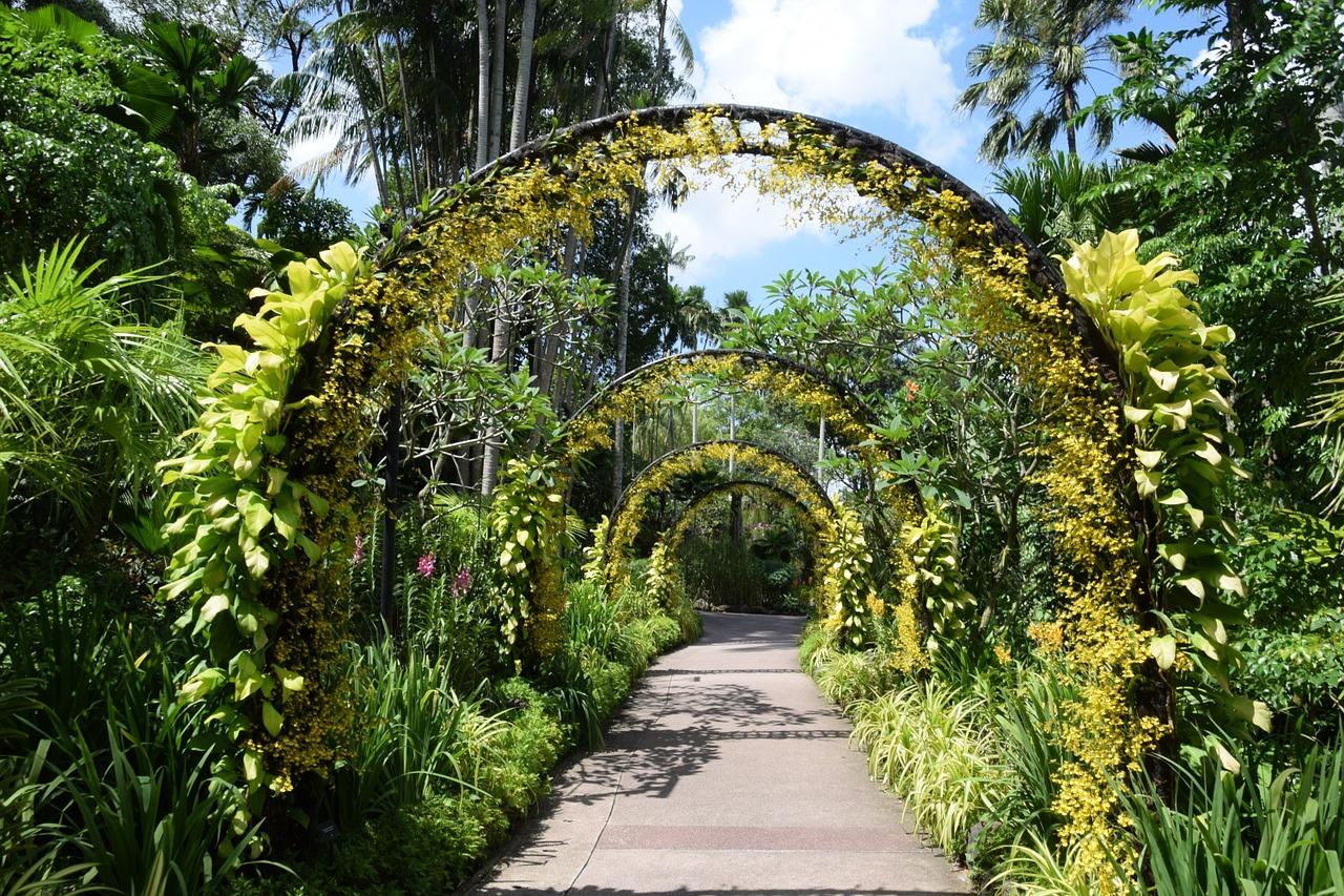 """Singapore Botanic Gardens"""
